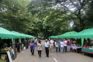 Good Market Events (2)